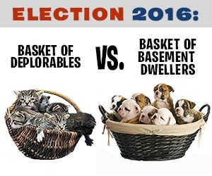 Basket of Basement Dwellers